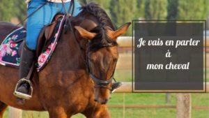 interview sur l'équitation et l'ostéopathie de Juliette Gantier
